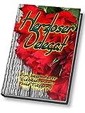 Herzloser Delegat: Ein besonderer Liebesroman mit Tiefgang