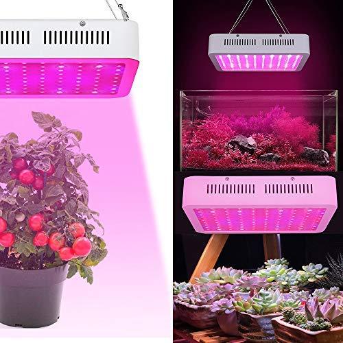AUFUN 300W 100LEDs Pflanzenlampe Pflanzenlicht - Vollspektrum Led Grow Light Panel mit Rot Blau White IR UV - für Gewächshaus Hydroponik Grow Box Veg Wachstum (300W) (Box Die Grow)