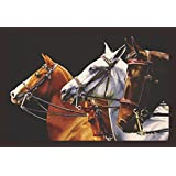 [Sponsored]Mad Masters Magnificent 3 Horses Good Luck 1 Piece Wooden Framed Painting |Wall Art | Home Décor | Painting Art | Unique Design | Attractive Frames