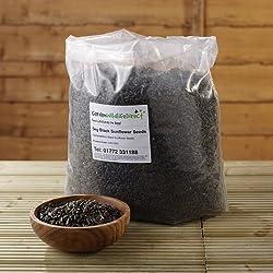 12.55Kg Black Sunflower Seed - Garden Wildlife Wild Bird Food