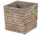 matches21decorativa hormigón cubretiesto/Macetero en piedra Muro de imitación cuadrado 1stk. disponible en 2tamaños, 12.5 cm