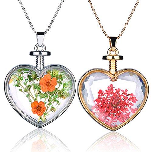 Yumilok Trockene Blumen Transparent Herz Anhänger Halskette Legierung Glas Flasche Kettenänhanger für Damen Mädchen, 2 Stücke (Glas Flasche Anhänger Halskette)