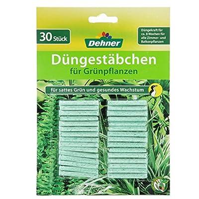 Dehner Düngestäbchen für Grünpflanzen, 4 x 30 Stück (120 Stück) von Dehner bei Du und dein Garten