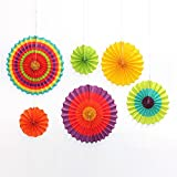 Veewon 6pcs papel de seda adornos de papel de ventilador para ventiladores Rainbow Fiesta Papel pompones para fiesta, event, decoración del hogar