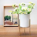 Questquo Ceramic Flower Plant Succulent Pot Indoor Rack Garden Display Stand Planter Holder Decor Size #3