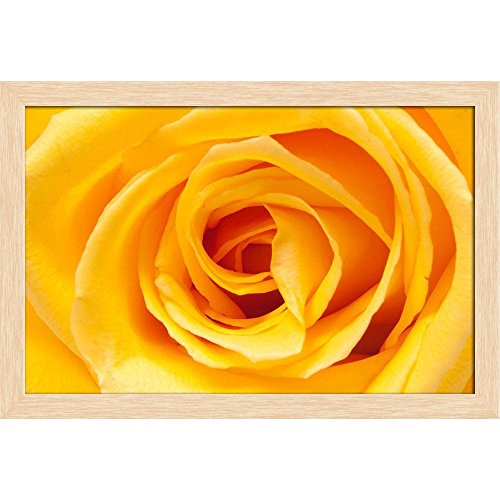 ArtzFolio Yellow Rose Canvas Painting Natural Brown Wood Frame 23.9 X 16Inch Rose Natural Wood