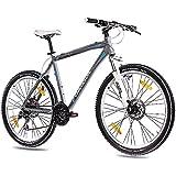 '26pulgadas MTB Mountain Bike CHRISSON Cutter 1.0aluminio con 24g acera gris mate, tamaño 53 cm, tamaño de rueda 26.00 inches