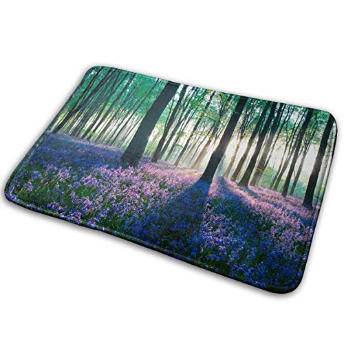 (hgfdhfgjrfj Purple Lavender in Forest Sunshine Doormat Home Decor, Entrance Mat Floor Mat Rug Indoor/Front Door/Bathroom/Living Room/Dining Room/Bedroom/Bathroom Rubber Non Slip Gloor Mat)