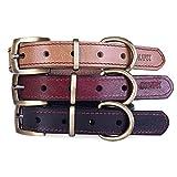 moonpet echtes Leder Hundehalsband, schwere Pflicht massivem Messing Schnalle–Ideal für Laufen Training, passt klein mittel große Hunde