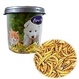 5 kg Mehlwürmer getrocknet Lyra Pet für Vögel Fische Reptilien Nager +30 L Tonne