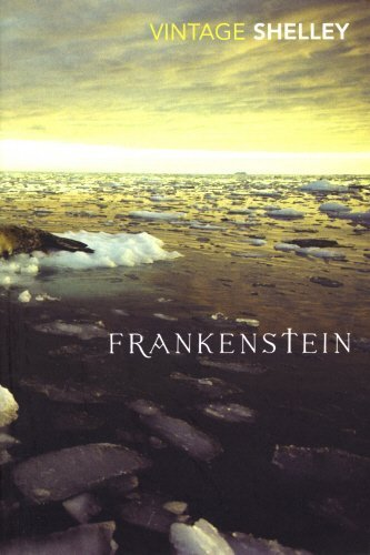 Frankenstein (Vintage Classics) by Mary Shelley (2008-05-28)