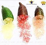 Portal Cool 3: 50Pcs Ice Lime Finger Citrus Caviar Tropical Graines Fruit Tree Garden Semente