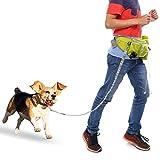FUNOC Suministros para mascotas perro establecer la cintura tramo de plomo con la bolsa de la cintura con ejercicio de entrenamiento de plomo a pie de material reflectante de manos libres