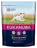 Eukanuba Puppy Welpenfutter für kleine Rassen mit verbesserter, neuer Rezeptur – Welpen Trockenfutter für Hunde im Alter von 1-12 Monaten in der Geschmacksrichtung Huhn – 1 x 1kg Beutel