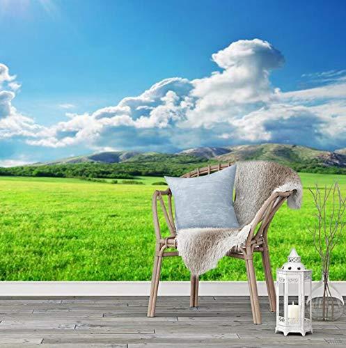 3D dreidimensionale nahtlose ganze Tapete Grünland Landschaft Tapete Wohnzimmer Sand Stromerzeugung Fernseher Hintergrund Wand großformatige Wandbilder, 200 × 150 cm