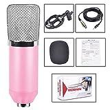 BM700 Grande Film di terremoto Live Karaoke con Microfono a condensatore per l'ancoraggio delle apparecchiature di Registrazione,Pink