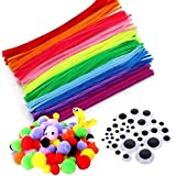 Pipe Cleaners Crafts Set, Fil chenille enfant, Fils chenille Loisirs Creatifs, Cure pipes et Pompoms avec Googly Eyes Sticky