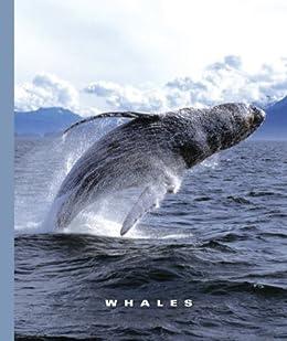 Whales (the World Of Mammals) por Sophie Lockwood epub