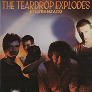 Kilimanjaro By The Teardrop Explodes 2001 05 03 The