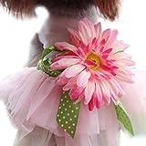 Rosennie Hund Katze Rock Haustier Prinzessin Kleidung Sunflower Blumen-Design hundebekleidung Haustier Zubehör Haustierkleidung Spitze Rock Kleidung Haustier Bowknot Kleid hundehalsband