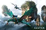 Avatar - Flying - Maxi Poster - 61 cm x 91.5 cm