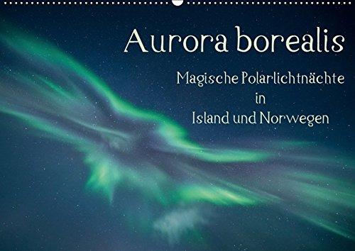 Aurora borealis - Magische Polarlichtnächte in Island und Norwegen (Wandkalender 2019 DIN A2 quer): Zauberhafte Polarlichter am Himmel über Island und ... (Monatskalender, 14 Seiten ) (CALVENDO Natur)