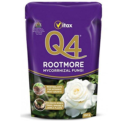vitax-q4-plus-mycorrhizal-rootmore-250g-sachet-plant-root-enhancer-plant-rootmore-q4-rootmore-with-a