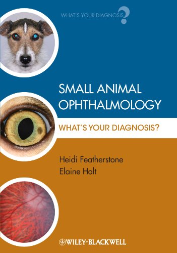 Small Animal Ophthalmology: What's Your Diagnosis? (English Edition)