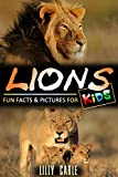 Lions: Fun Facts & Pictures For Kids