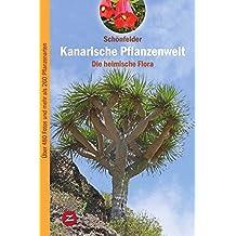 Kanarische Pflanzenwelt: Die heimische Flora (Pflanzenwelt der Kanaren)