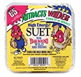 C & S Products Co Inc 11.75Oz Suet Cake (Pack Of 12) 12 Suet Cake/Bird Feeder