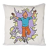 Tintin Poster, Taie d'oreiller, housse de coussin, décoration de canapé à la maison...