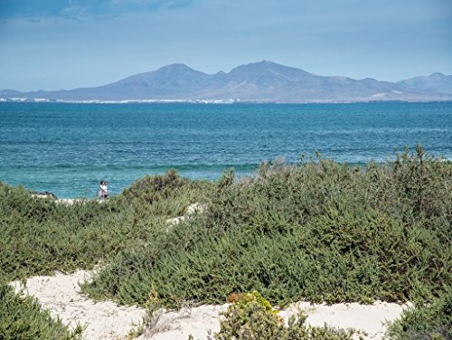 Preisvergleich Produktbild Lais Puzzle Fuerteventura 500 Teile