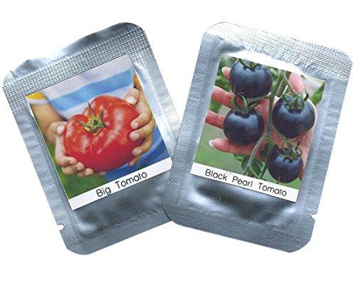 """Tomaten Samen 2er Set - je ca. 100 Tomatensamen/Pack - RARITÄTEN Schwarze Cherry Tomate""""black Pearl"""" +""""Big Red"""" Riesen-Fleischtomaten"""