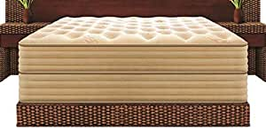 Peps Double Decker Queen Size Spring Mattress with Bed (72x60x10 inches)