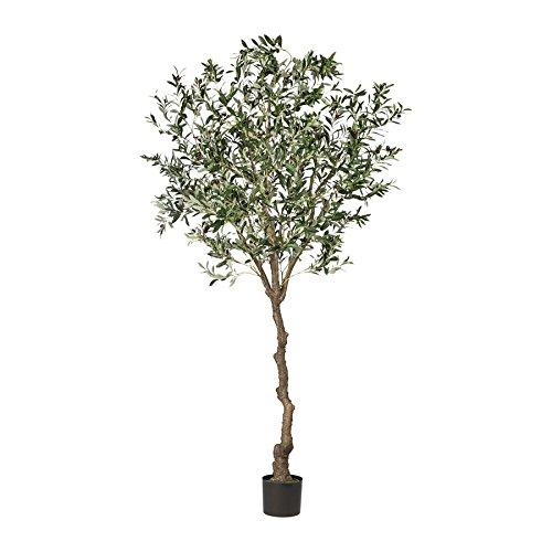 Gasper Olivenbaum, ca 240cm Kunststoffstamm, im Topf, Kunstbaum (994929261743)