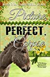 Picture, Perfect, Corpse: Book #7 in the Kiki Lowenstein Mystery Series (Kiki Lowenstein Mystery Series )