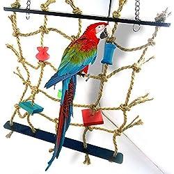 ecoolbuy acrílico cuerda Net Swing escalera juguetes para mascotas aves loro Chew Jugar escalada