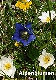 Alpenblumen (Wandkalender 2019 DIN A3 hoch): Dieser Kalender zeigt die bunte Vielfalt der Alpenflora. (Monatskalender, 14 Seiten ) (CALVENDO Natur)