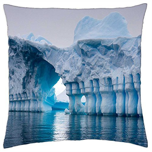 antarctica-throw-pillow-cover-case-16