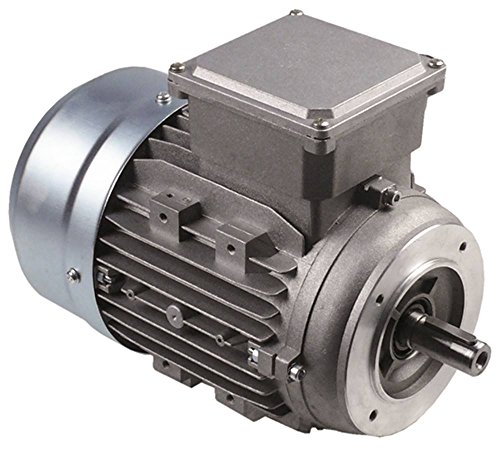 Pizza-Group Motor 80D4 für Teigknetmaschine TF17, TF22, TR17, TR22 400V 1,1kW 1400U/min 50Hz Welle ø 19mm 3 -phasig Höhe 200mm
