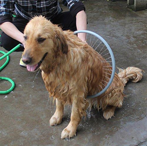 DAN Haustier Dusche Sprayer, 360 Grad Hund Waschmaschine Einstellbare Saubere Eckzahn Ringförmig Ganz Herum Schuss Unterlegscheibe Haustier Badewanne Dusche - 360-grad-sprayer
