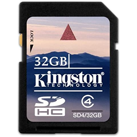 Kingston Scheda SDHC SD4/32GB SDHC di Classe 4 - 32GB