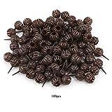 Nikou Scatola di Fertilizzante Bonsai - 100 Pezzi/Set Contenitore di plastica Fertilizzante Riutilizzabile per Fiori Bonsai (Taglia : Big)