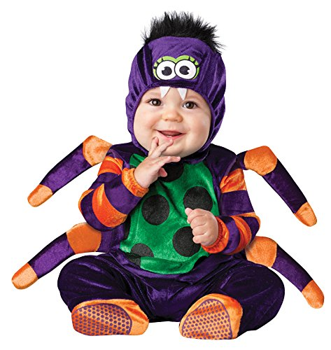 Itsy Baby Bitsy Kostüm Spider - In Character Boys Itsy Bitsy Spider Fancy dress costume Medium (12 - 18 mo) by In Character Costumes