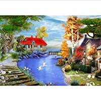 Frameless Picture Oil Painting by Numbers Picture by Numbers for Home Decor for Living Room 40 * 50Cm Garden