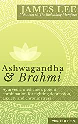 Ashwagandha & Brahmi - Ayurvedic medicine's potent combination for fighting depression, anxiety and chronic stress (English Edition)