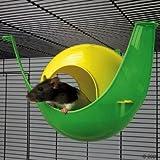 Hamster-Shuttle hellgrün/dunkelgrün, farblich sortiert