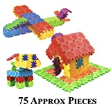 #5: 75 Square Colourful Educational Building Block Kit Do it Yourself DIY Learning Toy (Square Blocks)