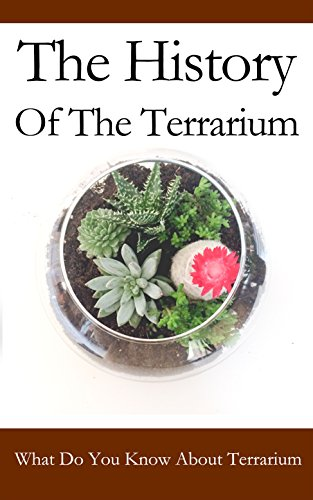 the-history-of-the-terrarium-what-do-you-know-about-terrarium